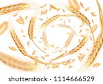 wheat ears and grains whirl in...   Shutterstock .eps vector #1114666529