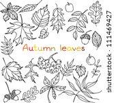 Autumn leaves doodles set