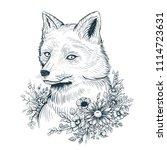 vector black and white fox... | Shutterstock .eps vector #1114723631