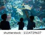 long beach  california  usa  ... | Shutterstock . vector #1114729637