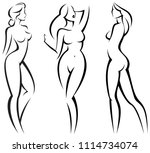 set stylized beautiful women... | Shutterstock .eps vector #1114734074