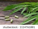 medical marijuana extract in... | Shutterstock . vector #1114761881