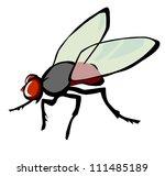 fly   Shutterstock .eps vector #111485189
