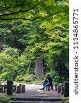 japan forest in summer season ...   Shutterstock . vector #1114865771
