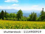 spring landscape in national... | Shutterstock . vector #1114900919