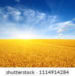 wheat field and sun in the sky  | Shutterstock . vector #1114914284