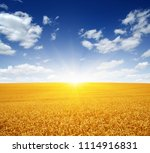 wheat field and sun in the sky | Shutterstock . vector #1114916831