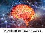 human brain. neural networks... | Shutterstock . vector #1114961711