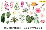 Stock vector tropical vector flowers set floral illustration exotic leaf isolated on white background 1114996931