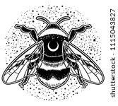 bumblebee hand drawn vector...   Shutterstock .eps vector #1115043827