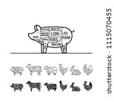diagrams for butcher shop   pig....   Shutterstock .eps vector #1115070455