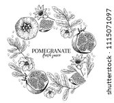hand drawn pomegranate... | Shutterstock .eps vector #1115071097