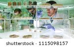 professional scientists men... | Shutterstock . vector #1115098157