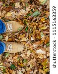 autumn leaf with single male... | Shutterstock . vector #1115163359