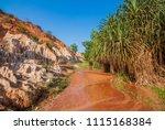 mui ne  vietnam   05th march... | Shutterstock . vector #1115168384