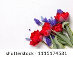red tulips and blue muscaries... | Shutterstock . vector #1115174531