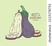 eggplant  full eggplant  a... | Shutterstock .eps vector #1115178731