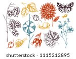 vector collection of hand drawn ... | Shutterstock .eps vector #1115212895