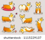 set of cute dogs breed welsh... | Shutterstock .eps vector #1115229137