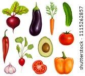 big set of vegetables on a... | Shutterstock . vector #1115262857