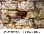 stone and brick walls | Shutterstock . vector #1115281817