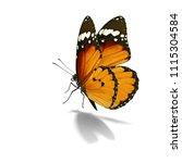 beautiful monarch butterfly... | Shutterstock . vector #1115304584