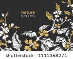 vector design of coffee... | Shutterstock .eps vector #1115368271