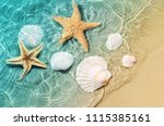 starfish and seashell on the... | Shutterstock . vector #1115385161