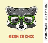 racoon nerd. smart glasses.... | Shutterstock .eps vector #1115446589
