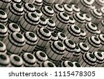cylinder shapes pattern... | Shutterstock . vector #1115478305