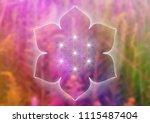 vector template of banner ... | Shutterstock .eps vector #1115487404