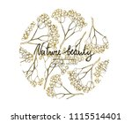 vector illustration. ash tree... | Shutterstock .eps vector #1115514401
