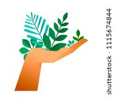 human hand holding green leaves ... | Shutterstock .eps vector #1115674844