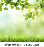 abstract green natural... | Shutterstock . vector #111579305