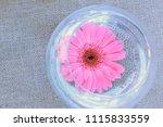 pink gerbera in glass vase | Shutterstock . vector #1115833559