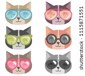 cats with colorful sunglasses... | Shutterstock . vector #1115871551