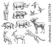 animal sketch set of wild bird  ... | Shutterstock .eps vector #1115871704