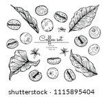 sketch floral botany collection.... | Shutterstock .eps vector #1115895404