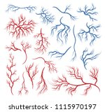 human veins and arteries. two... | Shutterstock .eps vector #1115970197