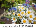 midsummer in latvia ... | Shutterstock . vector #1115998481