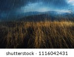 rainy weather landscape with... | Shutterstock . vector #1116042431