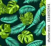 vector monstera and palm leaves.... | Shutterstock .eps vector #1116052541