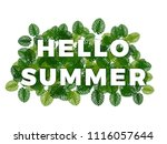 Text Hello Summer With Smooth...