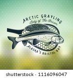 grayling fly fishing logo. the... | Shutterstock .eps vector #1116096047