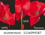 creative vector concept for... | Shutterstock .eps vector #1116099287