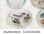 dental drill burs. dental...   Shutterstock . vector #1116106181