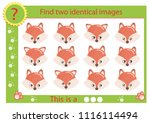 find two identical images with... | Shutterstock .eps vector #1116114494
