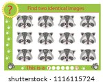 find two identical images with... | Shutterstock .eps vector #1116115724