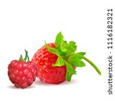 fresh  nutritious and tasty...   Shutterstock .eps vector #1116182321