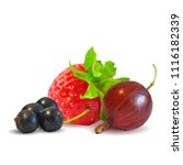 fresh  nutritious and tasty...   Shutterstock .eps vector #1116182339